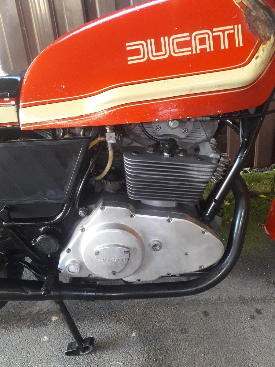 1976 DUCATI DESMO DM 500 B SPORT For Sale (picture 5 of 6)
