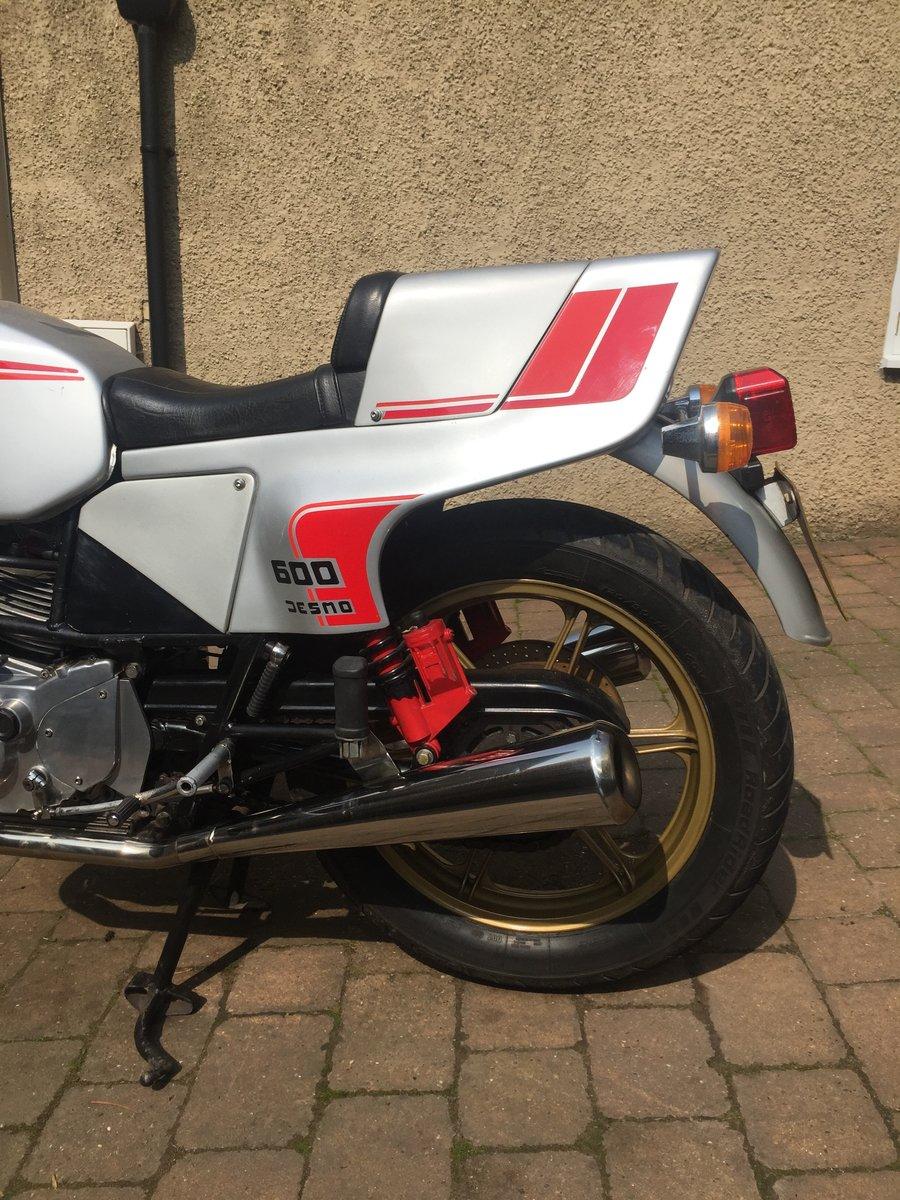 1981 Ducati Pantah 600SL Desmo SOLD (picture 5 of 6)
