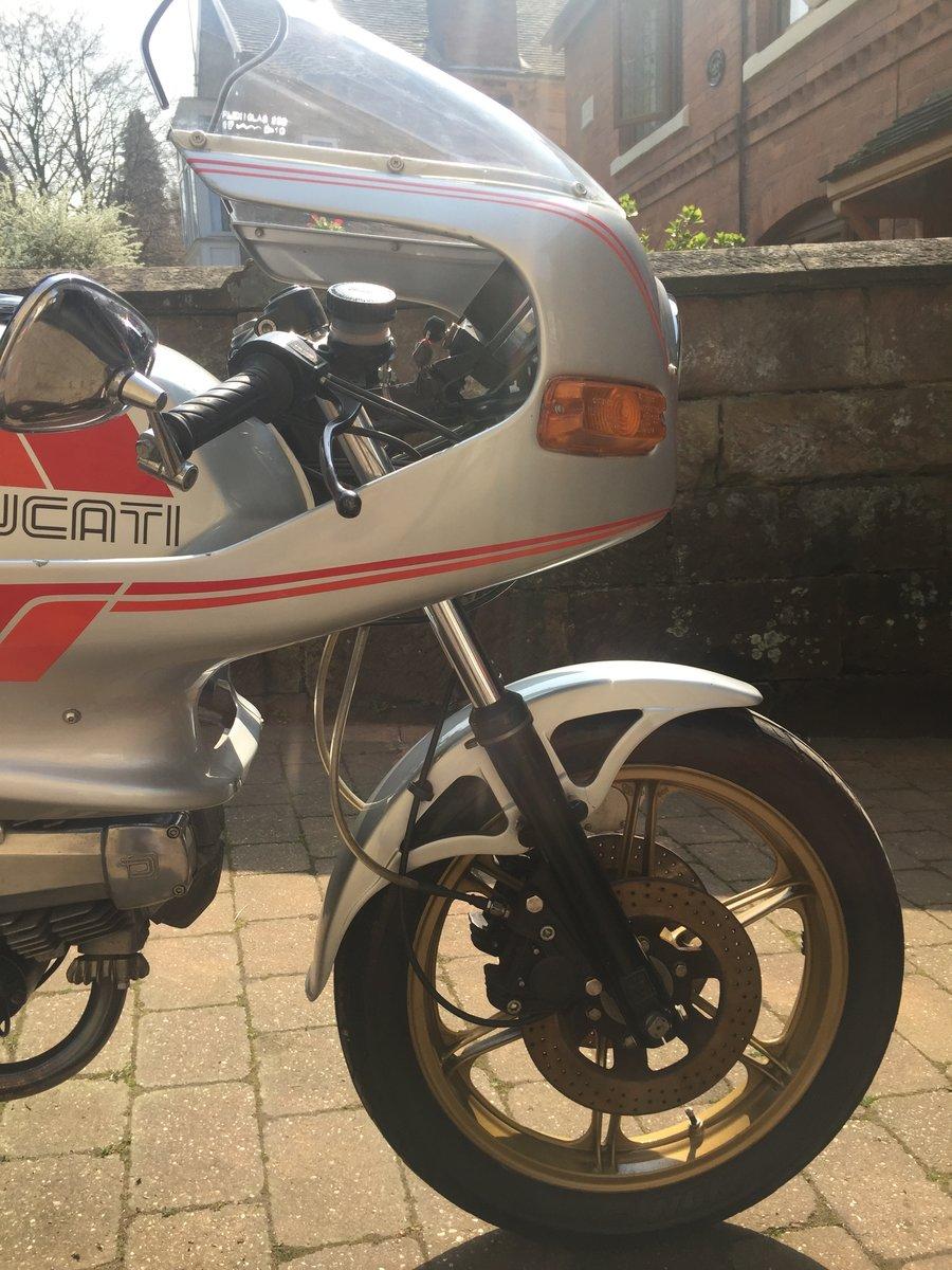 1981 Ducati Pantah 600SL Desmo SOLD (picture 6 of 6)