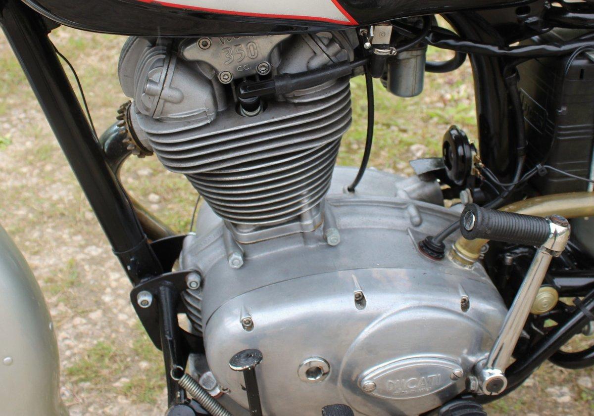 1966 Ducati 350 cc Sebring Classic Ducati  For Sale (picture 3 of 6)