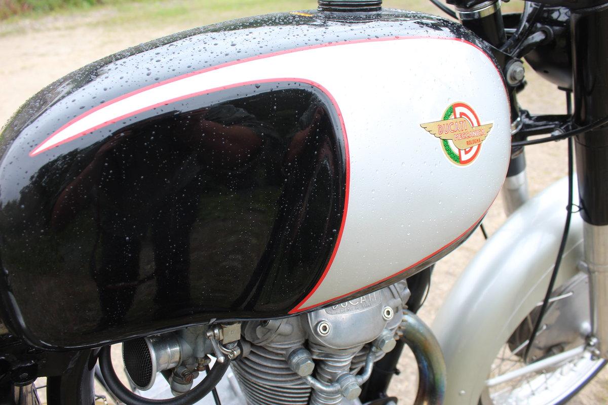 1966 Ducati 350 cc Sebring Classic Ducati  For Sale (picture 4 of 6)