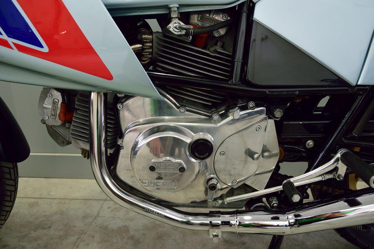 1981 Ducati Pantah 500 For Sale (picture 5 of 6)