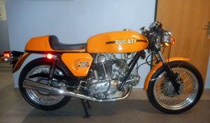 Ducati 750 Sport Bevel