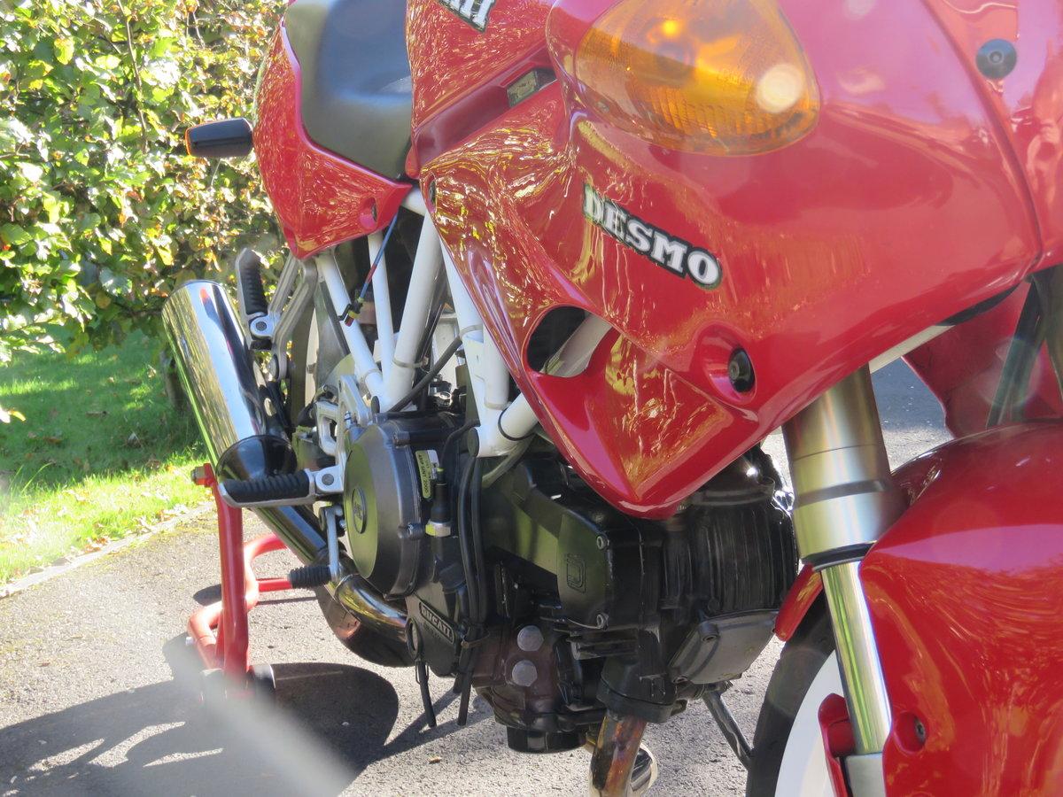 1991 Ducati 750SS - Timewarp bike, collectors item For Sale (picture 4 of 6)