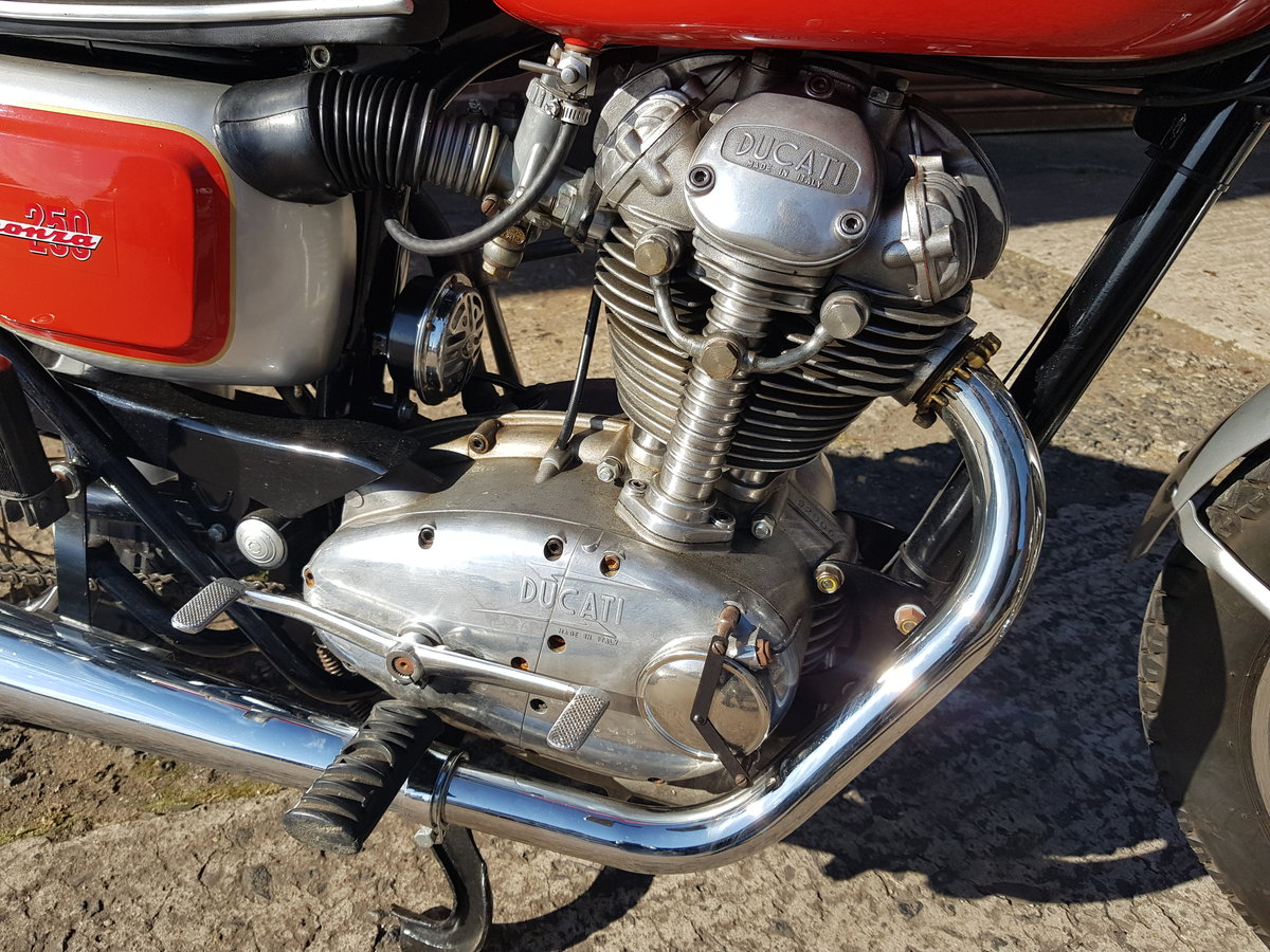 1966 Ducati 250 Monza For Sale (picture 3 of 6)