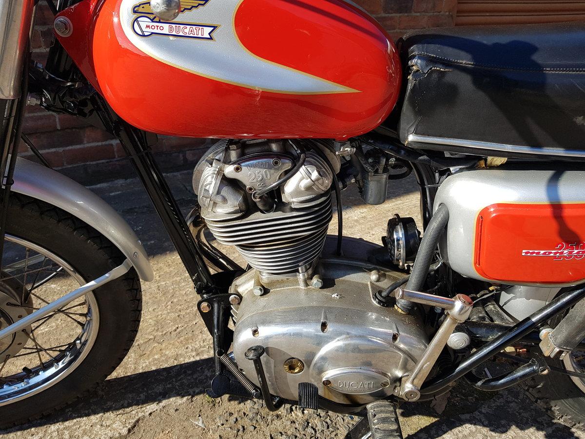 1966 Ducati 250 Monza For Sale (picture 4 of 6)