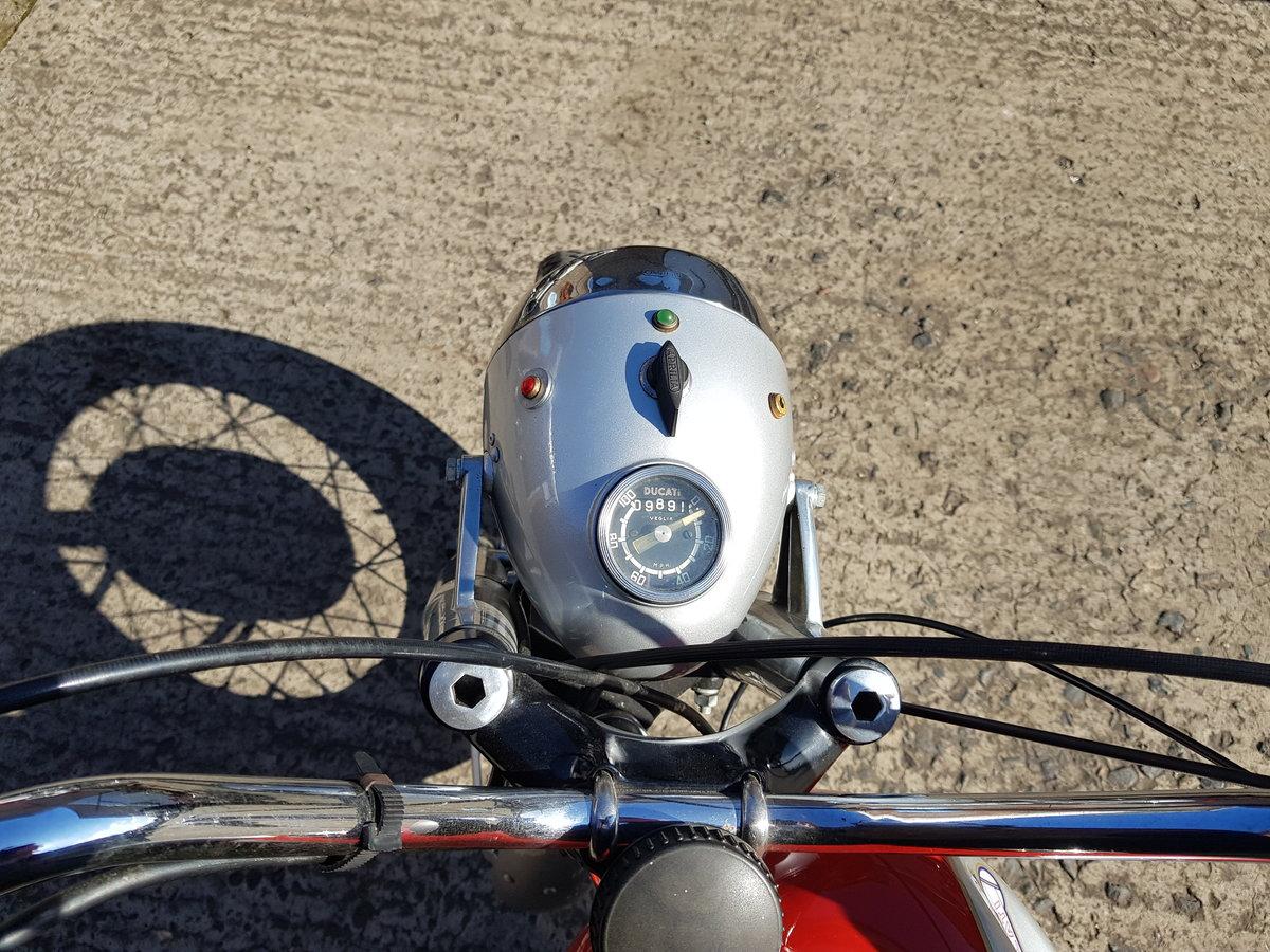 1966 Ducati 250 Monza For Sale (picture 5 of 6)