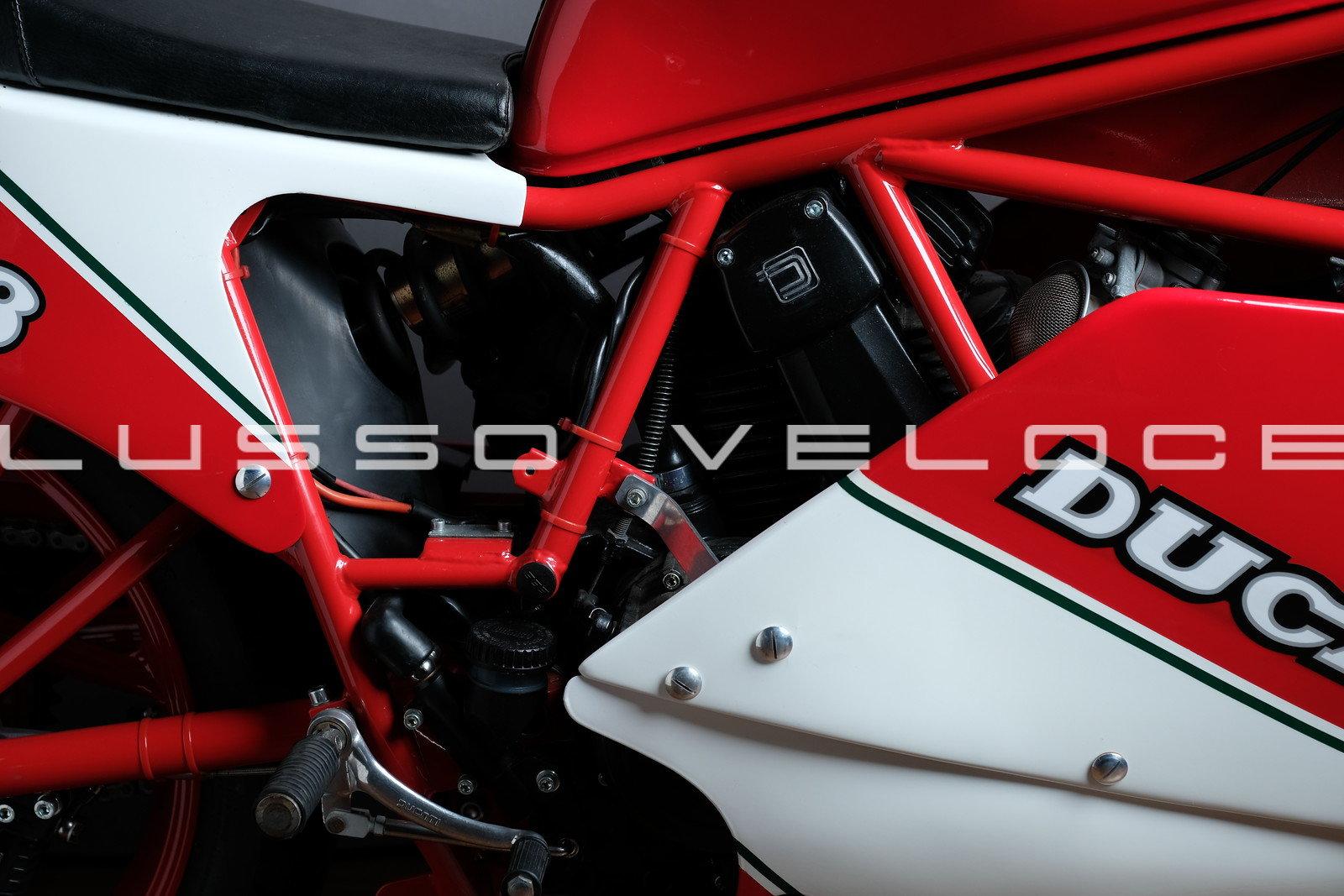 1986 Rare Ducati F3 350 fully restored For Sale (picture 4 of 15)