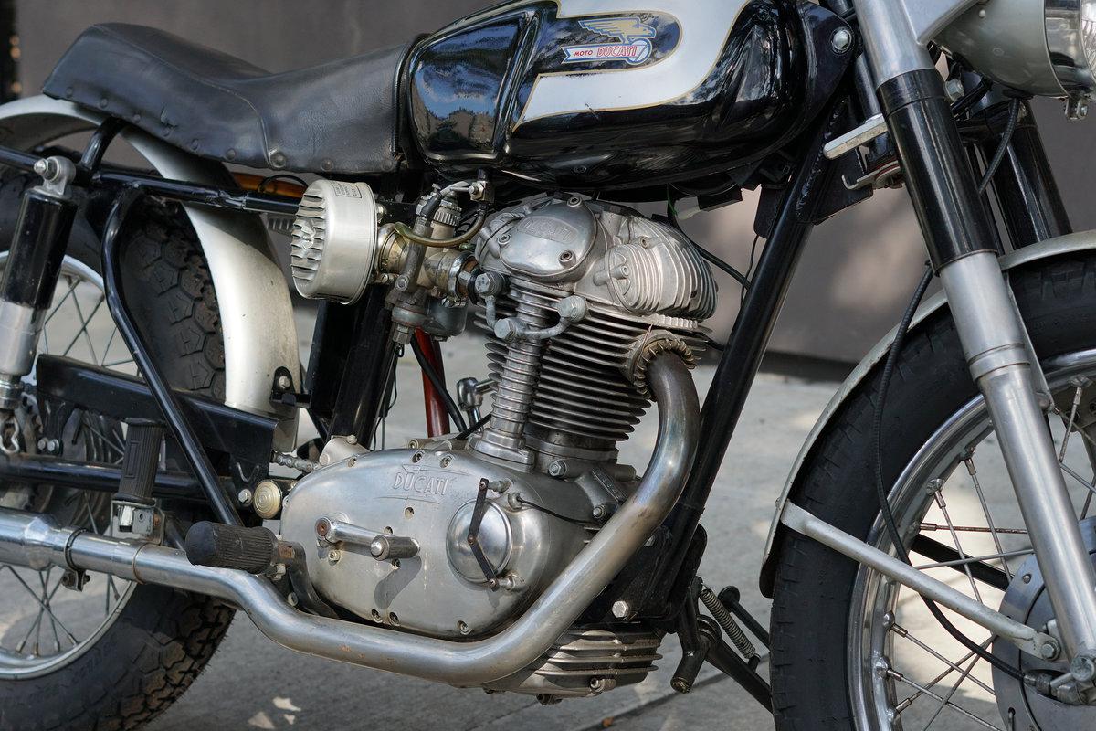 1967 Ducati 250 Scrambler For Sale (picture 9 of 12)