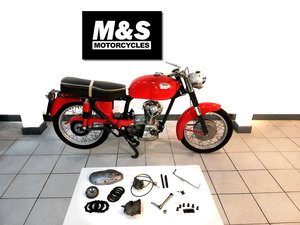 Picture of 1967 Ducati TS160 For Sale