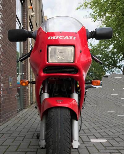 1990 Ducati-750-Sport-Original-collector bike For Sale (picture 6 of 6)