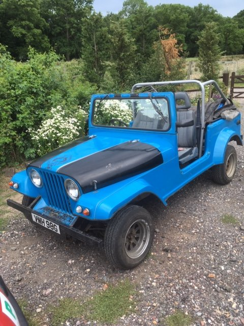 1968 Eagle jeep kit car 2.0 engine. Summer fun. For Sale (picture 1 of 6)
