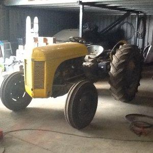 1955 Ferguson diesel tractor