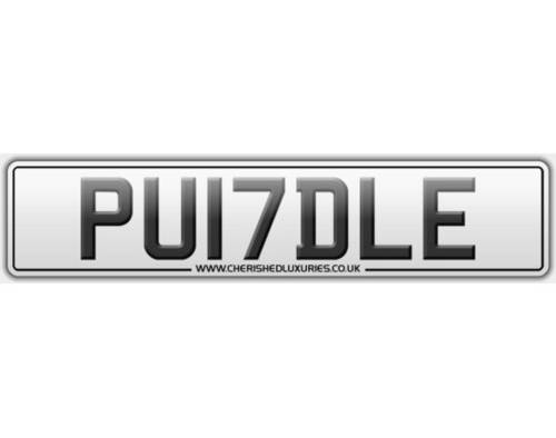 PU17DLE.        PUDDLE For Sale (picture 2 of 3)