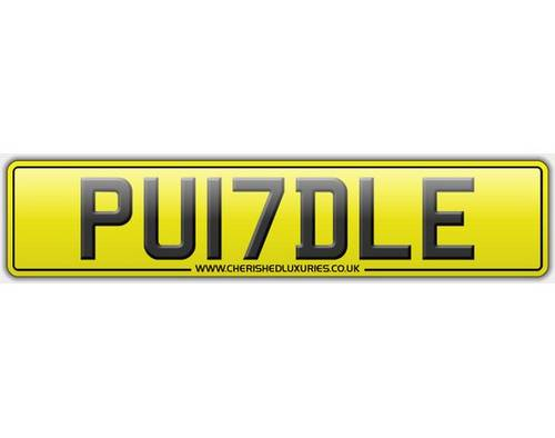 PU17DLE.        PUDDLE For Sale (picture 3 of 3)