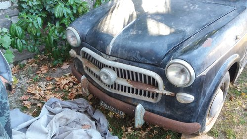 1957 Fiat 1100 - 1 owner - Parked in an Italian barn since 1965! For Sale (picture 2 of 5)