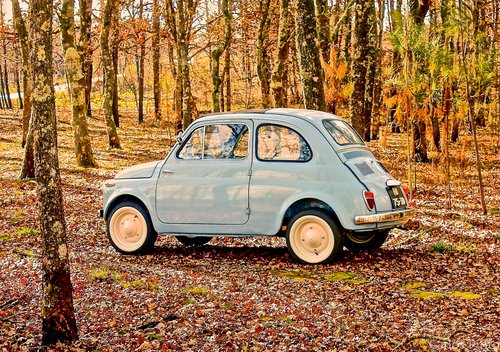 1959 Fiat 500 Nuova For Sale (picture 1 of 1)