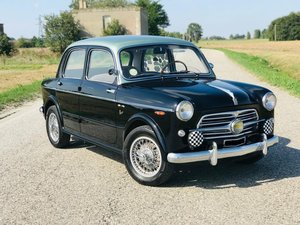 1954 Fiat 1100 - 103 TV *ASI ORO*  1000 Miglia Eligible For Sale