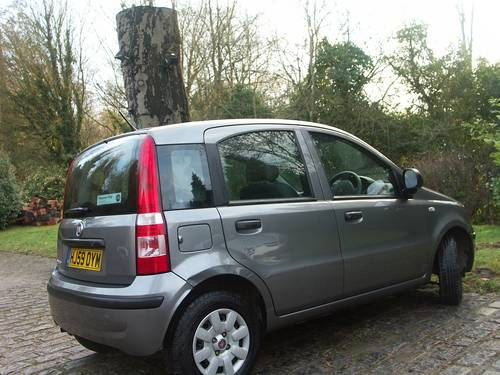 2010 Fiat Panda 1.2 Dynamic ECO SOLD (picture 3 of 6)
