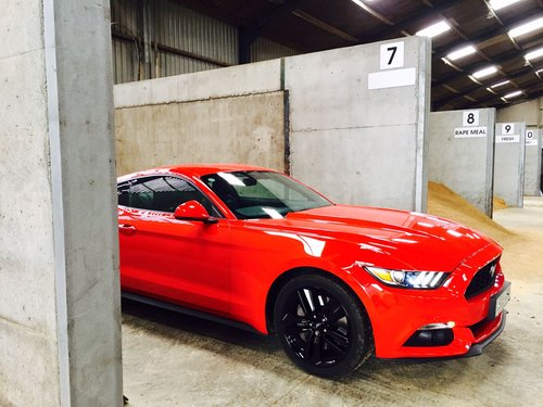 2016 Ford Mustang Eco-Boost 2.3 High Spec SOLD (picture 6 of 6)