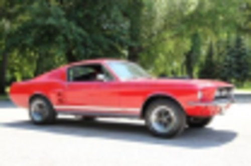 1967 Ford Mustang 5.7 GTA Fastback High Performance For Sale (picture 2 of 6)
