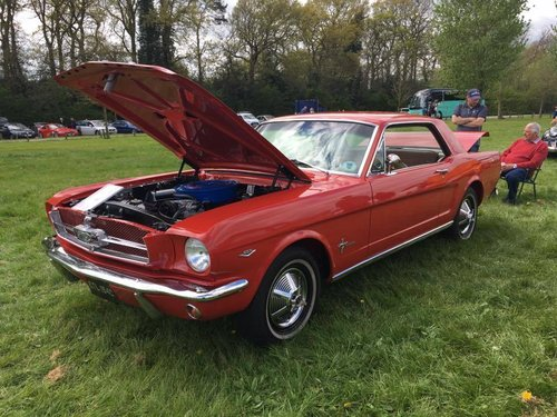 1964 1/2 FORD MUSTANG 289 V8 DCODE RED SHOW WINNER STUNNING! SOLD (picture 3 of 6)