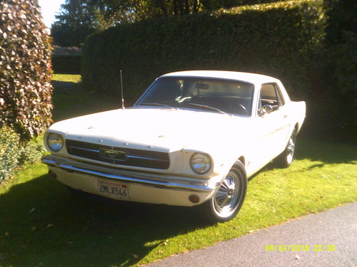 1965 SUPERB 65 MUSTANG 289 COUPE  For Sale (picture 2 of 6)