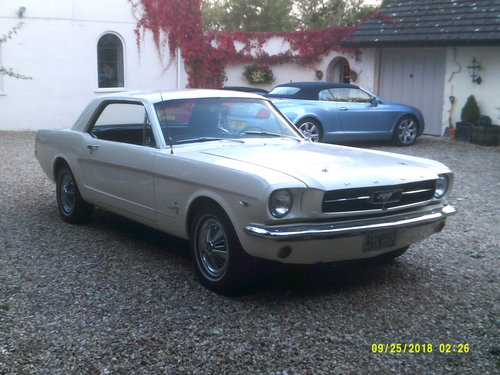 1965 SUPERB 65 MUSTANG 289 COUPE  For Sale (picture 3 of 6)