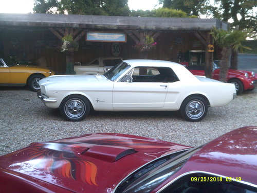 1965 SUPERB 65 MUSTANG 289 COUPE  For Sale (picture 4 of 6)