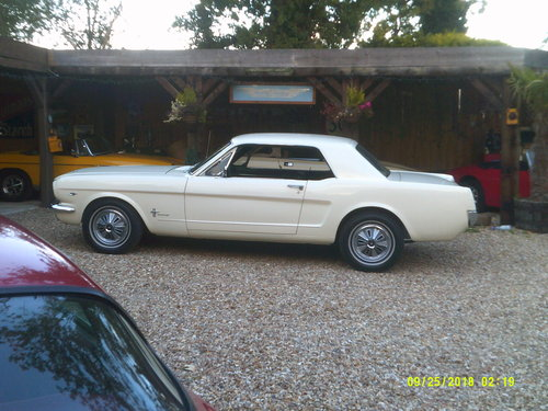 1965 SUPERB 65 MUSTANG 289 COUPE  For Sale (picture 5 of 6)