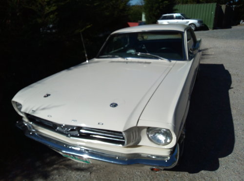1965 SUPERB 65 MUSTANG 289 COUPE  For Sale (picture 6 of 6)