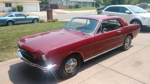 Ford Mustang Coupe 1966 For Sale (picture 2 of 6)
