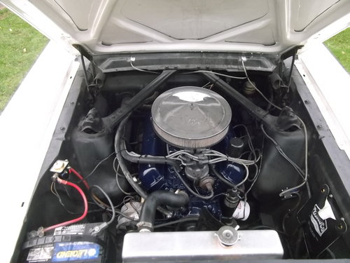 1964 1/2 Mustang Coupe 289 V8, C Code, 4 Speed Manual For Sale (picture 3 of 6)