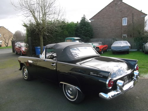 1955 Ford Thunderbird, Convertible, V8, Manual Gearbox SOLD (picture 3 of 6)