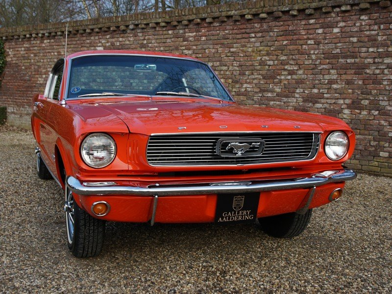 1966 Ford Mustang Fastback 2+2 manual, original color scheme For Sale (picture 5 of 6)