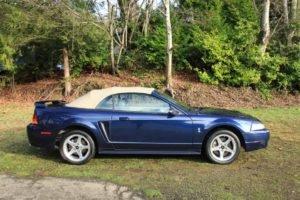 2001 Ford Mustang Cobra Convertible = Manual Purple $17.9k For Sale