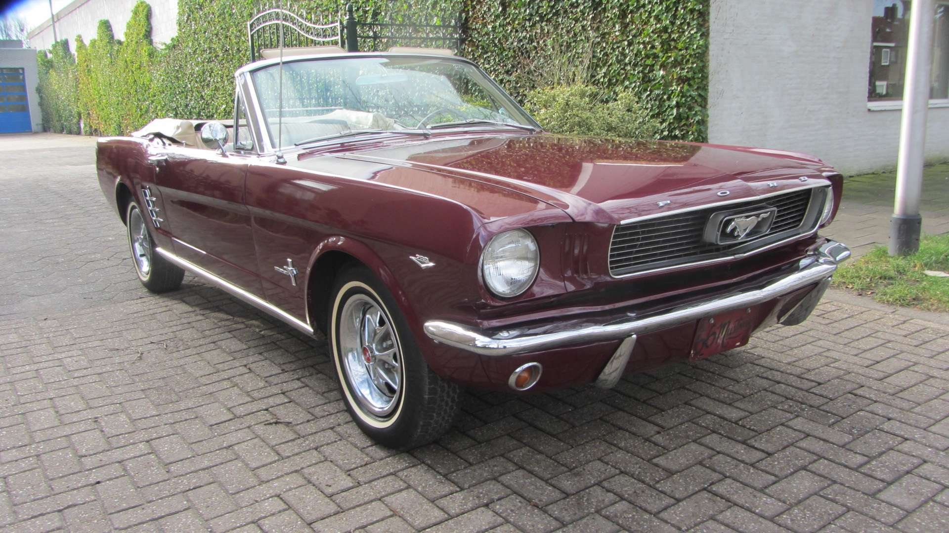 Ford Mustang V 8 Pony Intr 1966  & 50 USA Classics For Sale (picture 3 of 6)