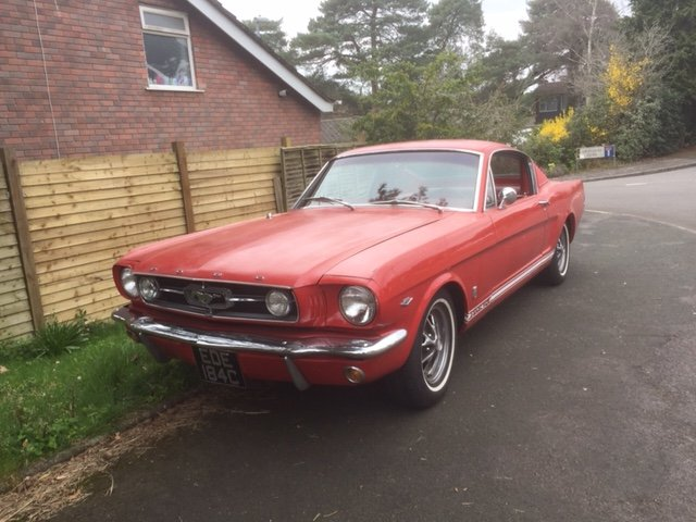 1965 Mustang Fastback GT 289 For Sale (picture 1 of 6)