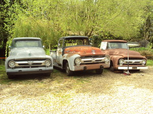 1956 Ford F100 pick ups For Sale