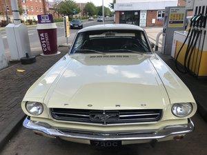 Almost Pristine, Original 1964 Ford Mustang 3300cc For Sale