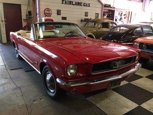 1965 Mustang Convertible Brilliant