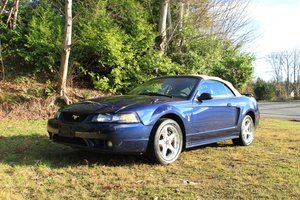Lot 118- 2001 Ford SVT Cobra  For Sale by Auction
