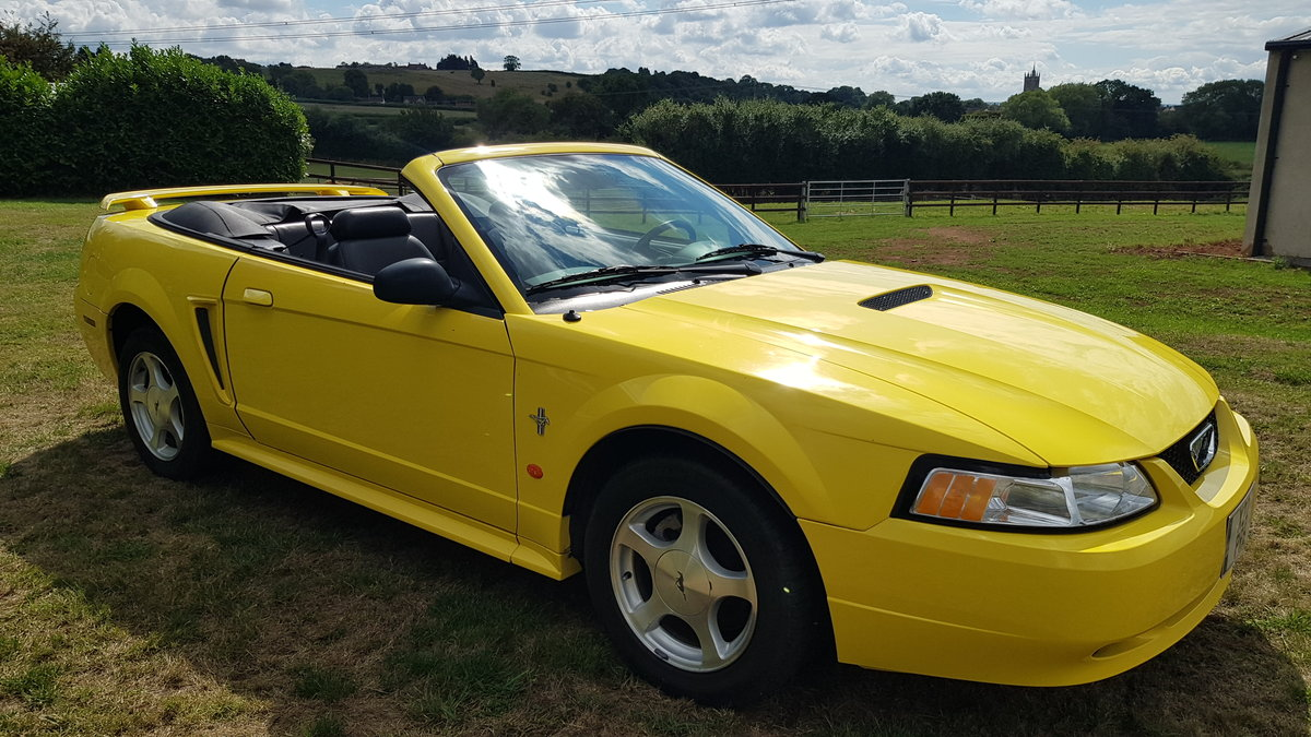 2002 Ford Mustang - Less than 22000 rust free miles For Sale (picture 2 of 6)