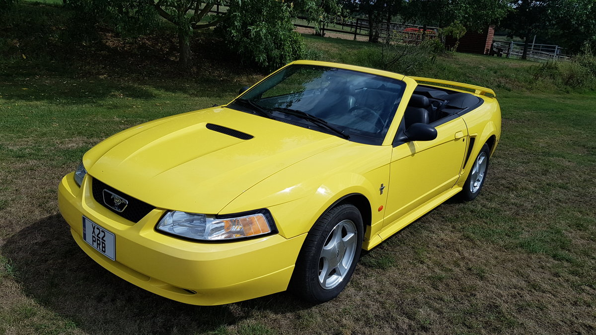 2002 Ford Mustang - Less than 22000 rust free miles For Sale (picture 3 of 6)