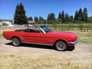 1965 Ford Mustang Convertible = 289 Auto Red Restored $obo For Sale