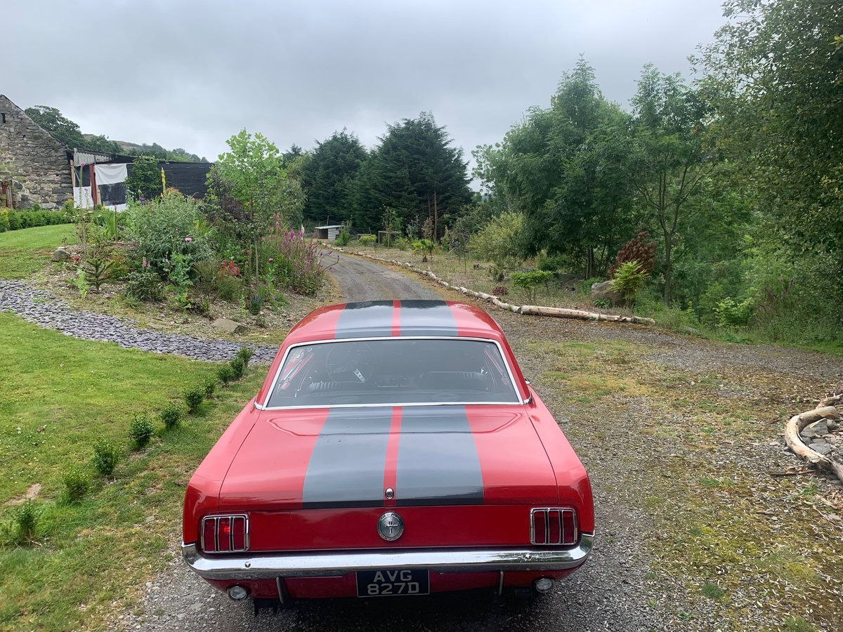 1966 Candy Apple Red 302 4 Speed Automatic V8 Mustang For Sale (picture 2 of 4)