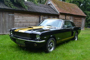 1965 Mustang Coupe - GT350H For Sale