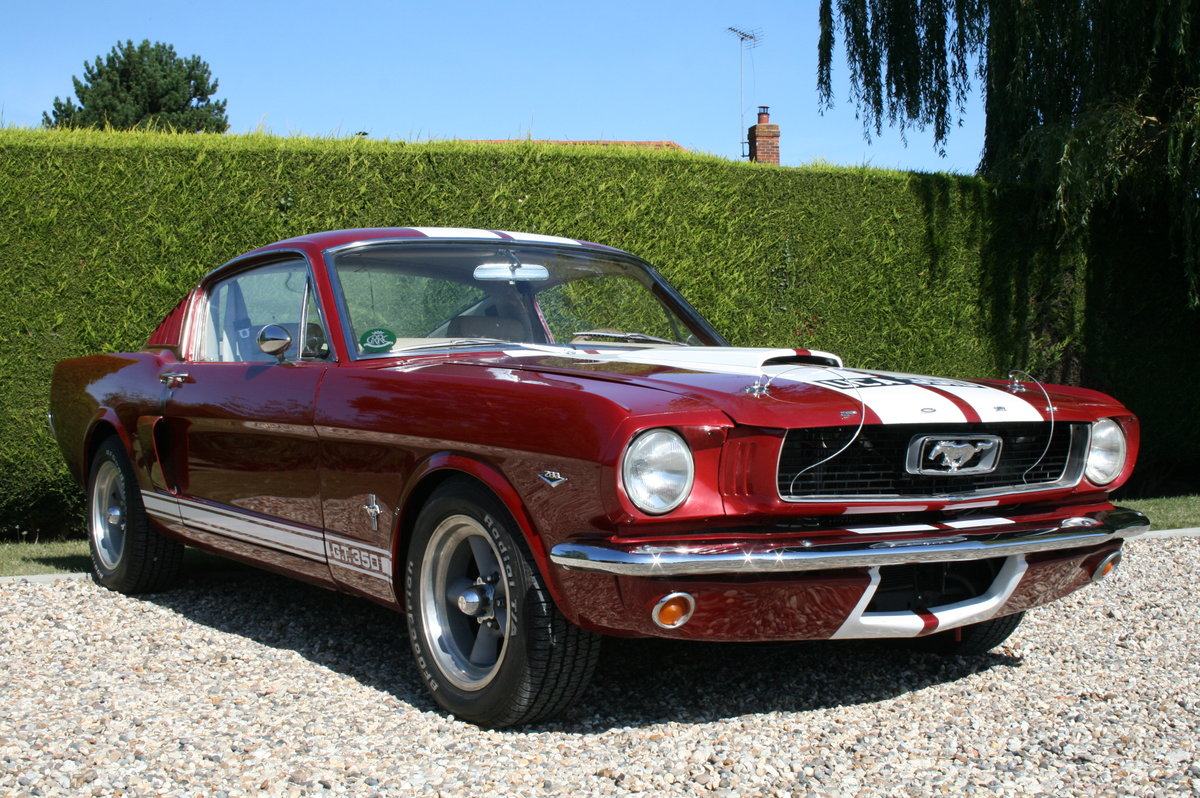 1966 Ford Mustang Fastback 289 V8 GT350 Evocation  For Sale (picture 6 of 6)