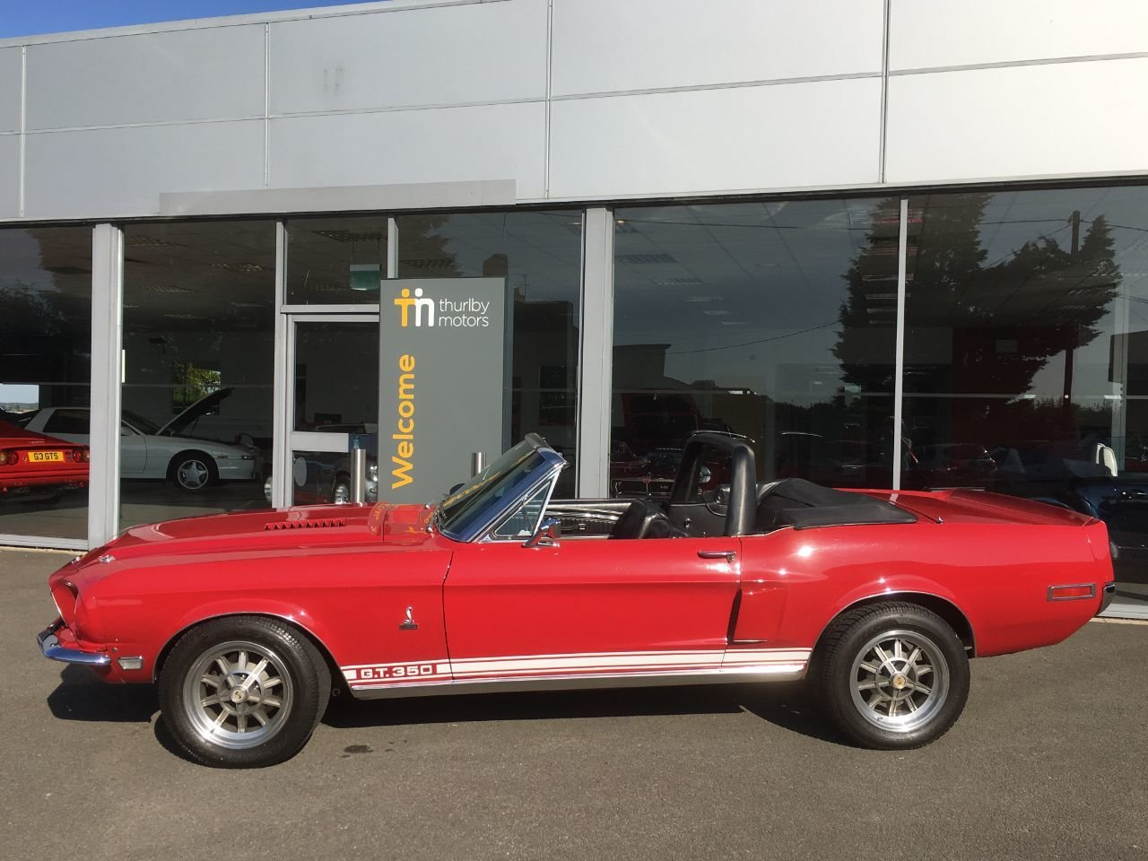 1968 MUSTANG GT350 For Sale (picture 3 of 6)