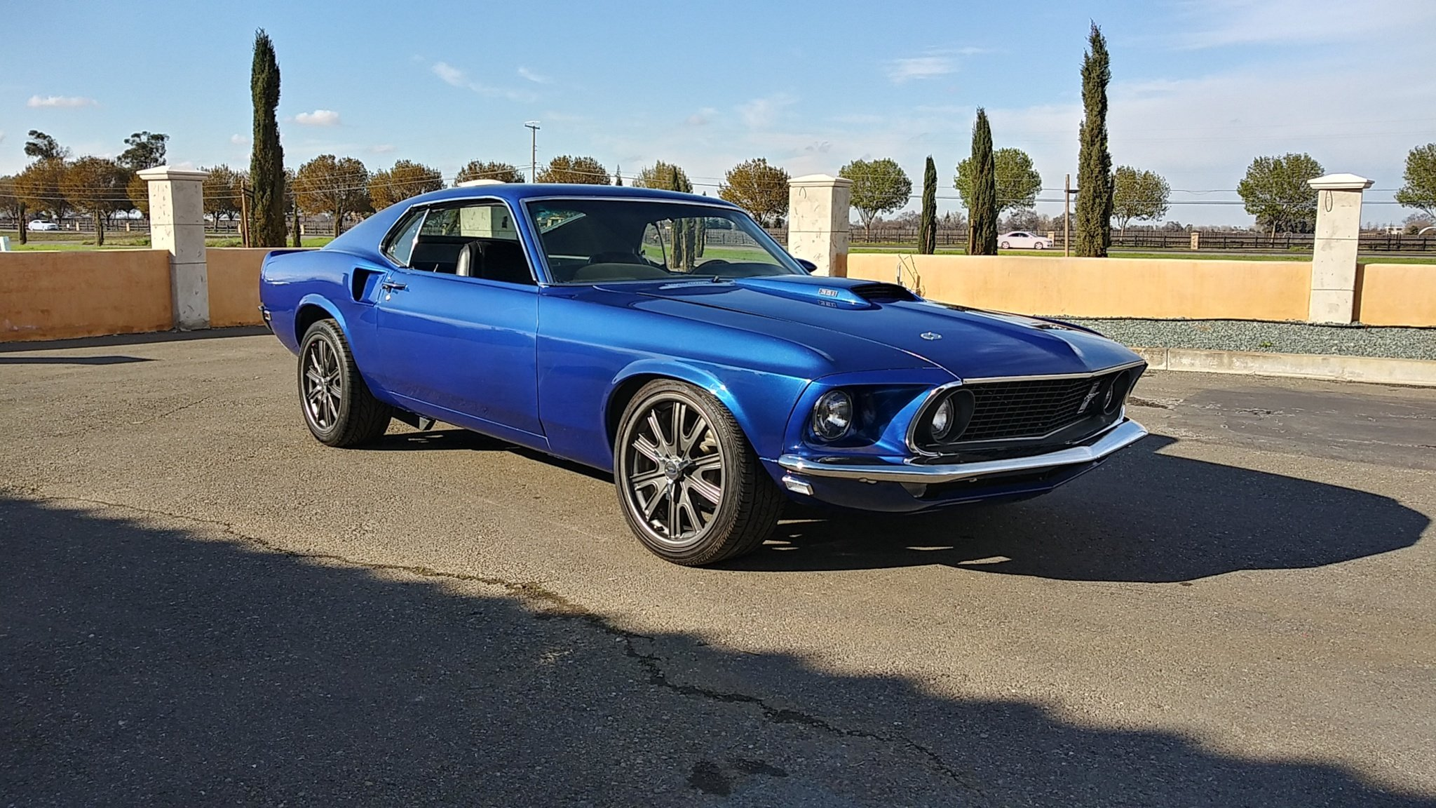 1969 Ford Mustang Fastback '69 For Sale (picture 1 of 6)